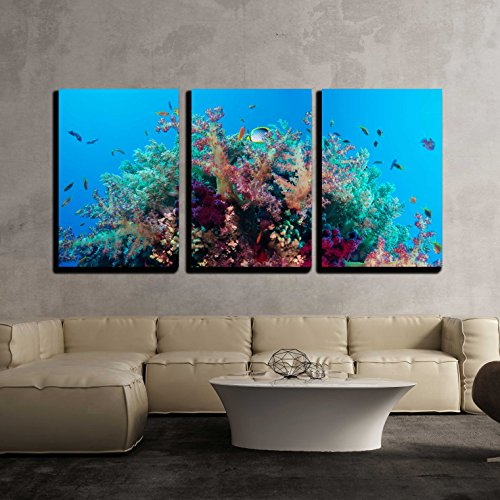 "wall26 - 3 Piece Canvas Wall Art - Colorful Underwater Offshore Rocky Reef with Coral and Sponges - Modern Home Decor Stretched and Framed Ready to Hang - 24""x36""x3 Panels"