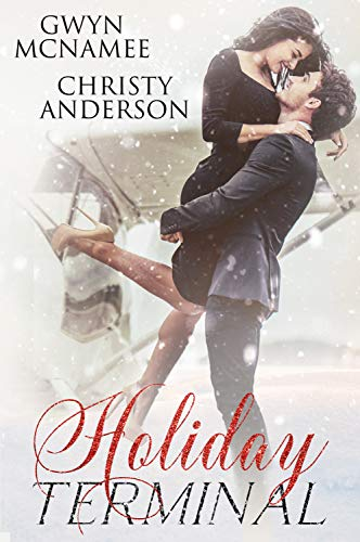 Holiday Terminal: (A Second Chance Secret Baby Billionaire Holiday Romance) by [McNamee, Gwyn, Anderson, Christy]