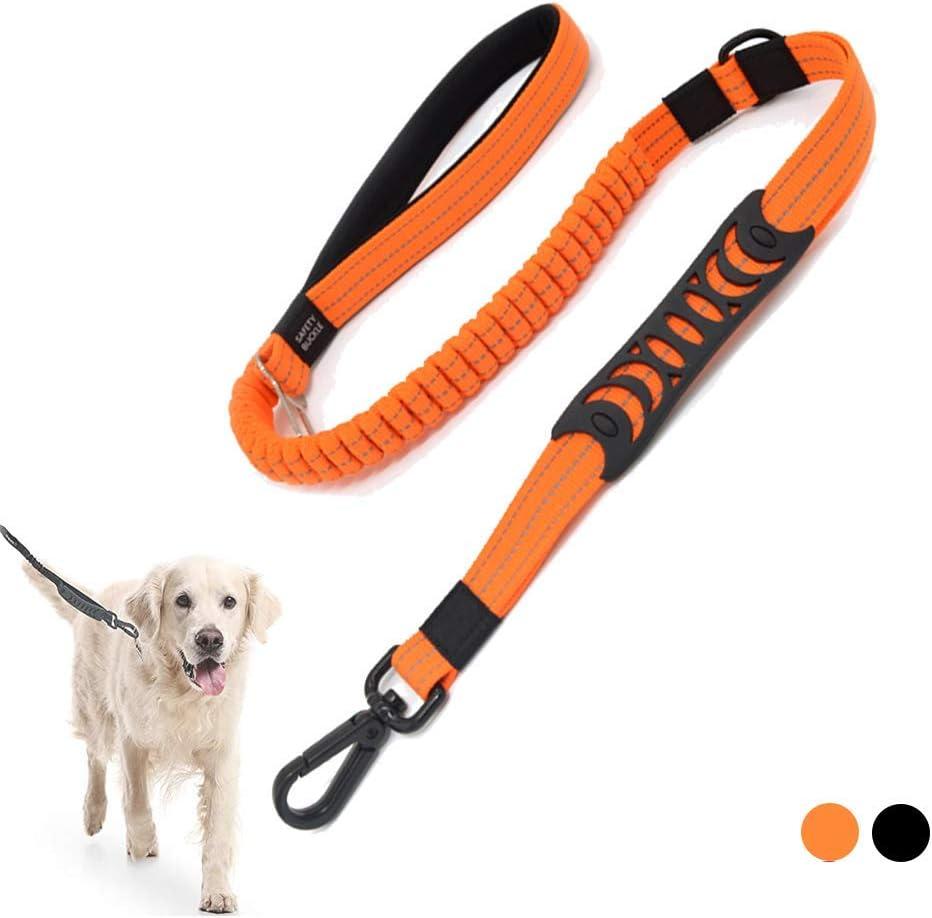 Correa de Perro - Cinturón de Seguridad Coche - Adiestramiento - Cuerda Elástica para Running - para Perros Grandes, Medianos y Pequeños (Naranja)