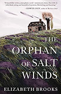 Book Cover: The Orphan of Salt Winds