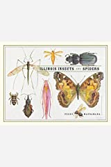 Illinois Insects and Spiders Paperback