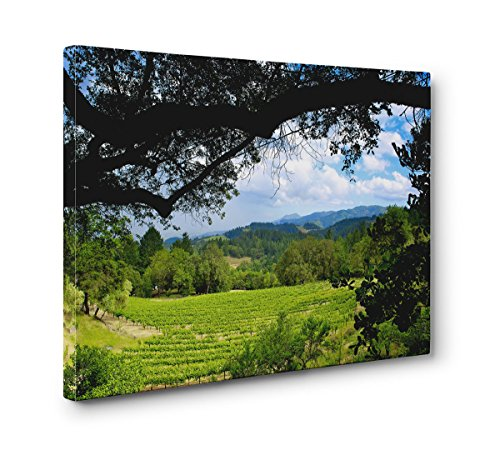 Sonoma Wine Country, California Ready to Hang 30x20 Inch Canvas Print