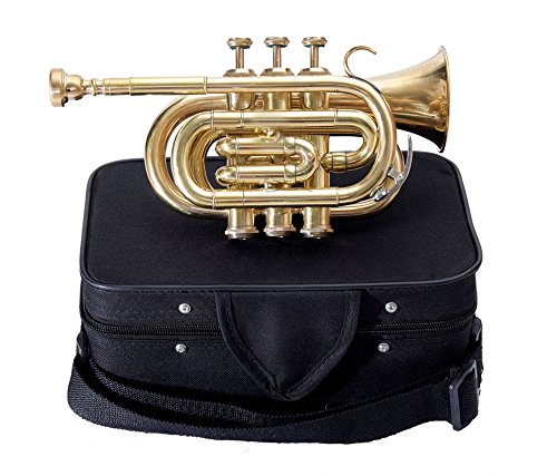 Top Grade Pocket Trumpet Brass Finish With Free Mouthpiece + Case by SHREYAS