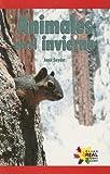 Animales en el Invierno, Jane Snyder, 1404274820