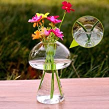 Garden Landscaping & Decking - Mushroom Shape Hydroponic Plants Flower Glass Vase Home Decor - Mushroom Hydroponic Kit Vase Flores Artificial Artificiales Para Decoracion Grandes Azul - 1PCs