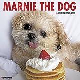 Marnie the Dog 2018 Wall Calendar (Dog Breed Calendar)