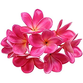 Amazon 100 pink hawaiian plumeria frangipani silk flower bunch of 10 pu real touch lifelike artificial plumeria frangipani flower bouquets wedding home party decoration mightylinksfo Choice Image