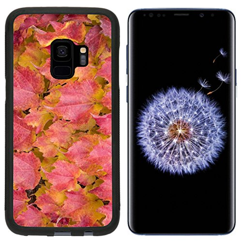 Luxlady Premium Samsung Galaxy S9 Aluminum Backplate Bumper Snap Case IMAGE ID: 34212245 Brightly colored maple leaves during ()