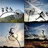 Fairies and Dandelions Dance Together, Fairy
