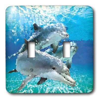 Dolphins Metal Switchplate - 3dRose lsp_4852_2 Dolphins Double Toggle Switch