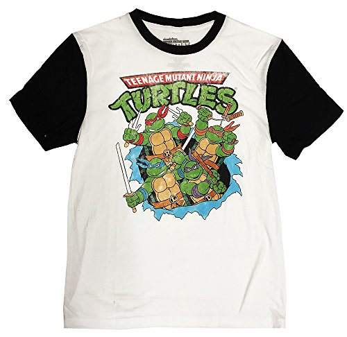 Men's Teenage Mutant Ninja Turtles Break Through Raglan Sleeve T-shirt