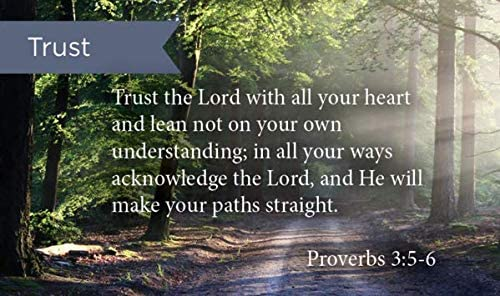 Pass Along Pocket Scripture Cards, Trust In The Lord, Proverbs 3:56, Pack  of 25