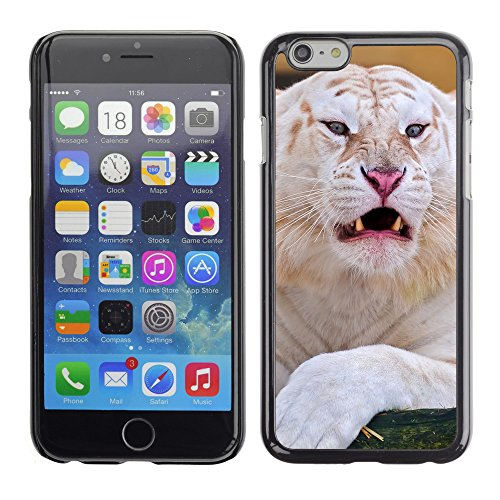 Premio Sottile Slim Cassa Custodia Case Cover Shell // V00004008 tigre blanc fixant // Apple iPhone 6 6S 6G 4.7""