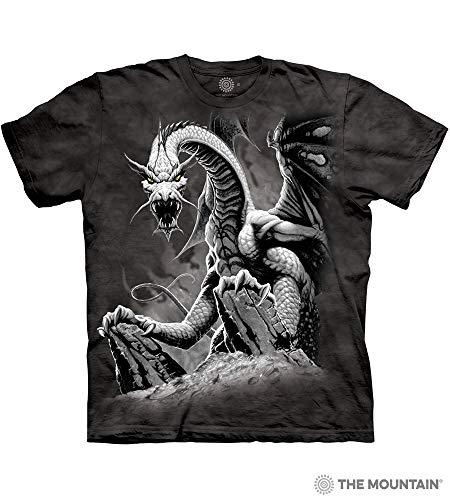 Dragon Black Spring - 4