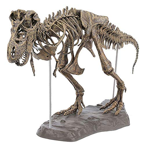 STARmoon Tyrannosaurus Rex Skeleton Dinosaur Animal Collector Decor Model Toy -