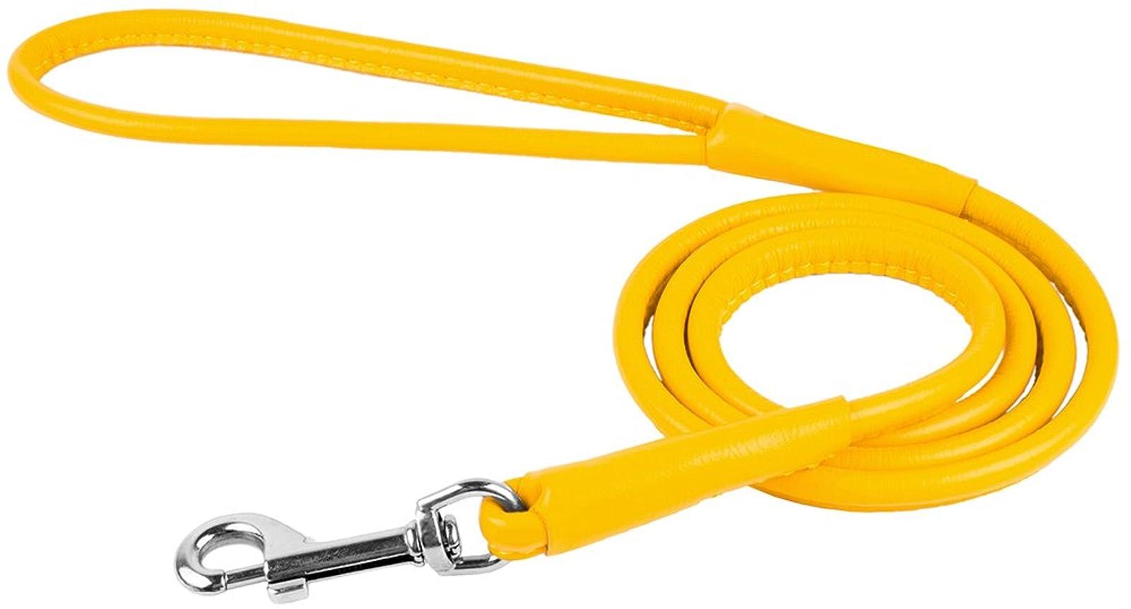 CollarDirect Rolled Leather Dog Leash 4ft Soft - 8