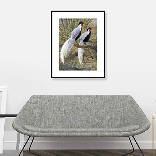 Picsdream Unframed Lithograph Print Chinese Bird on Matte Paper