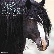 Wild Horses 2019 Wall Calendar