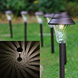 Enchanted Spaces Solar Path Light, Set of 6, Bronze, with Glass Lens, Metal Ground Stake, and Extra-Bright LED