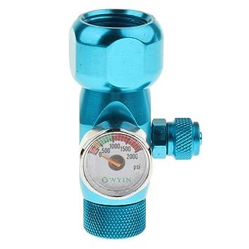 FLAMEER Regulador Manómetro de Co2 Acuario Accesorios Herramineta Fácil Instalación de Pecera Elegante