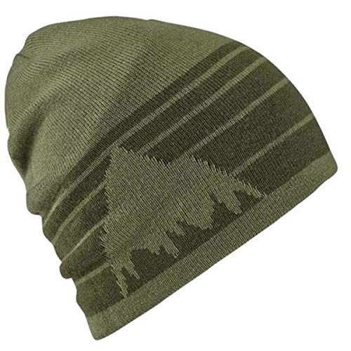 Burton Unisex Billboard Slouch Beanie, Clover/Forest Night, One Size