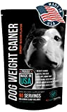 PET CARE Sciences Weight Gainer for Dogs - Injury Recovery and Muscle Builder Supplement for Dogs with Multi Benefits - Sweet Bacon Flavor - Made in The USA