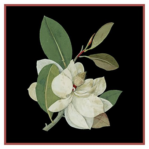 Magnolia Flower by Mary Delany Counted Cross Stitch (Magnolia Pattern)