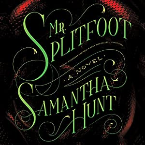 Mr. Splitfoot Audiobook