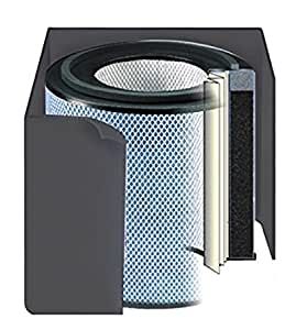Amazon Com Replacement Filter Fr405 For Austin Air