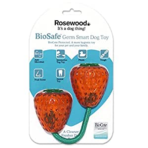 BioSafe Strawberry Dog Toy Rosewood Pet Toy