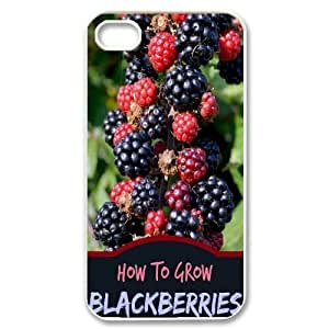 Fruit World CUSTOM For Samsung Galaxy S5 Mini Case Cover LMc-79512 at LaiMc