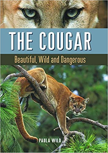 I want to find a cougar
