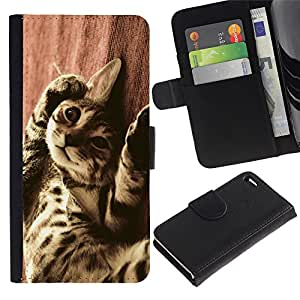 Bengal Serengeti Ocicat Savannah Cat - la tarjeta de Crédito Slots PU Funda de cuero Monedero caso cubierta de piel Apple iPhone 4 / iPhone 4S / 4S