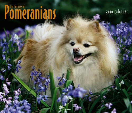 Pomeranians, For the Love of 2010 Deluxe Wall