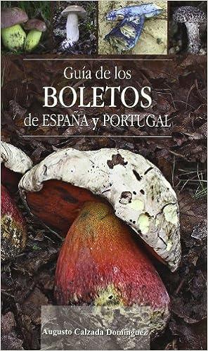 GUIA DE LOS BOLETOS DE ESPAÑA Y PORTUGAL O.VARIAS: Amazon.es: CALZADA DOMINGUEZ AUGUSTO: Libros