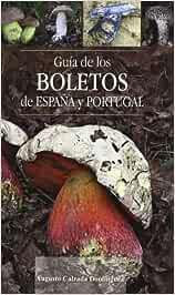 GUIA DE LOS BOLETOS DE ESPAÑA Y PORTUGAL O.VARIAS: Amazon.es ...