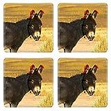 Liili Natural Rubber Square Coasters Image ID 21264005 One of the cute donkeys in Cordillera de Lipez