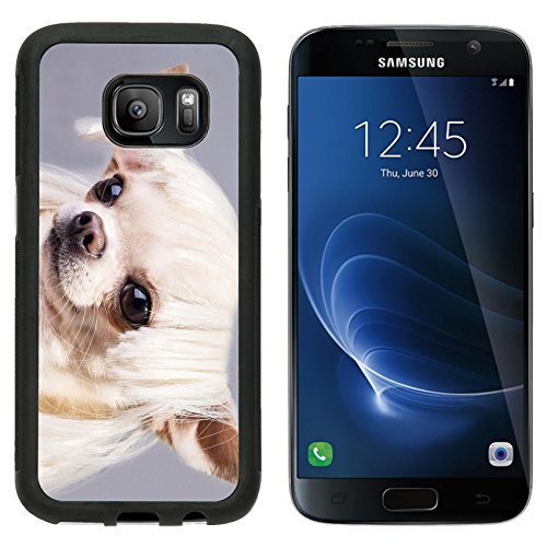 MSD Premium Samsung Galaxy S7 Aluminum Backplate Bumper Snap Case beautiful dog close up portrait Image ID (Cute And Easy Hairstyles For Halloween)
