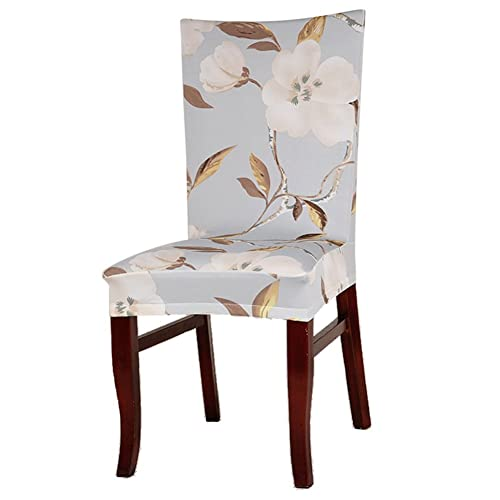 Dining Chair Cover: Buy Dining Chair Cover Online at Best ...