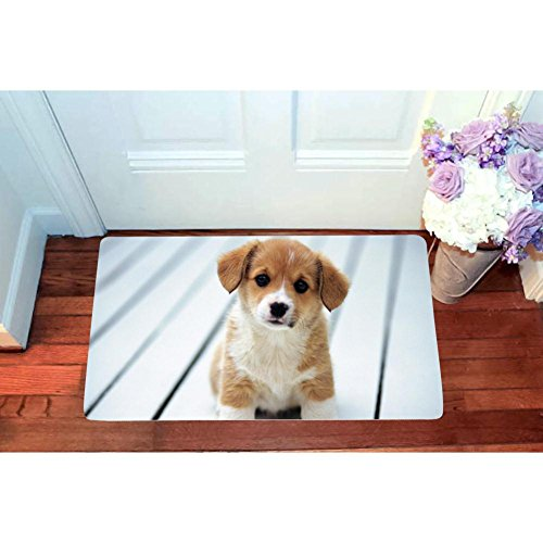 (Puppy Little Dog Animal Pet Square Doormat Non Slip Entrance Door Mat Toilet Floor Mats Bath Rugs 15.7