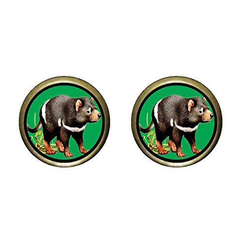 (GiftJewelryShop Bronze Retro Style Tasmanian Devil Photo Stud Earrings 12mm Diameter)