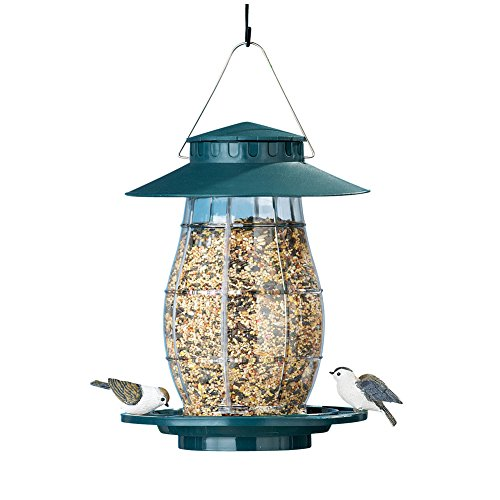 Flowers Proof Squirrel (Collections Etc Green Hanging Outdoor Squirrel Proof Bird Feeder with Round Perch)
