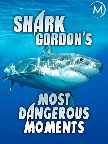 shark films - 9