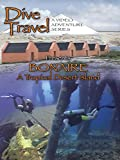 Dive Travel - Bonaire, A Tropical Desert Island