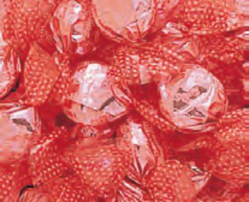 Go Lightly Sugar Free Watermelon Hard Candy 1LB Bag