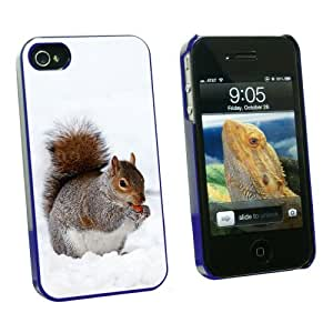 Graphics and More Squirrel Eating in Winter - Snap On Hard Protective Case for Apple iPhone 4 4S - Blue - Carrying Case - Non-Retail Packaging - Blue