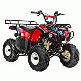 TaoTao Brand New ATA-125D Kids Gas Utility ATV for Youth - Burgundy