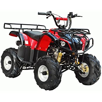 Amazon tao tao model 125d atv 110cc fully auto with reverse taotao brand new ata 125d kids gas utility atv for youth burgundy sciox Images