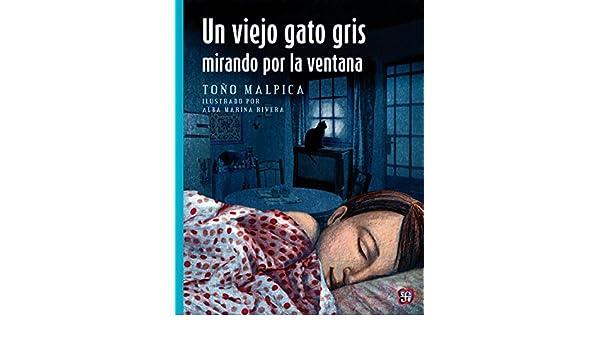 Un viejo gato gris mirando por la ventana (A La Orilla Del Viento) eBook: Antonio Malpica, Alba Marina Rivera Rivera: Amazon.es: Tienda Kindle