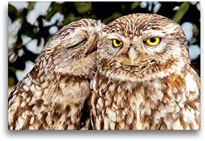 CALVENDO Lienzo de 45 cm x 30 cm Horizontal, Vive el Amor: Dos búhos sentados estrechamente Unidos Entre sí, Imagen sobre Bastidor. Dos búhos, Navarra, España Animales, Animales: CALVENDO: Amazon.es: Hogar